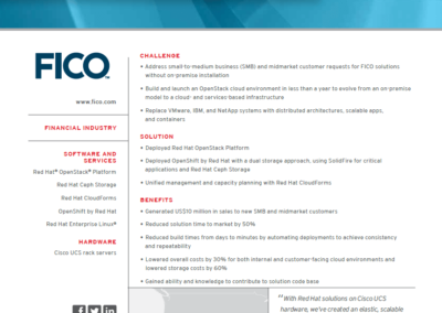Red-Hat-FICO-Customer-Snapshot
